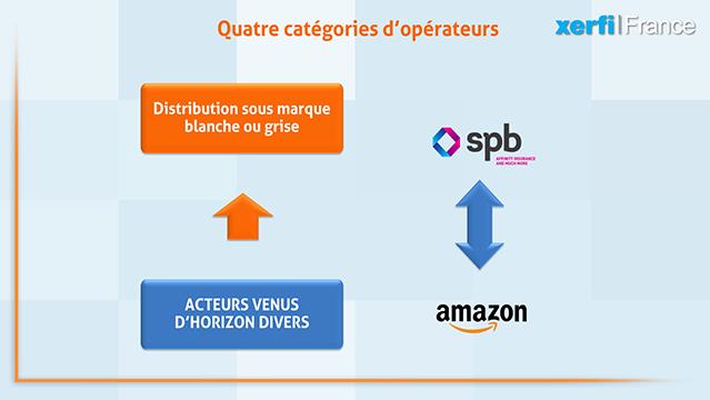 Alexandre-Boulegue-ABO-Les-marches-de-niche-dans-l-assurance-dommages-5980
