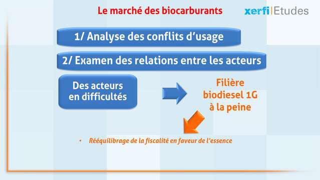 Alexandre-Boulegue-Le-marche-des-biocarburants