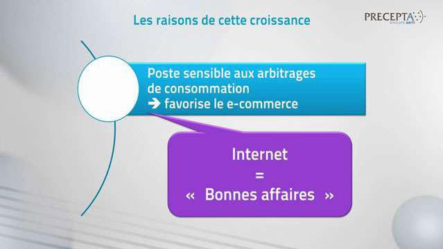 Aurelien-Duthoit-La-distribution-d-articles-de-decoration-face-a-la-revolution-numerique--2860