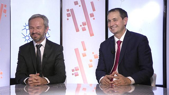 Bruno-Coulmance-Francois-Mary-B.-Coulmance-et-F.-Mary-Securiser-fiscalement-le-CIR-et-les-prix-de-transfert-de-la-R&D