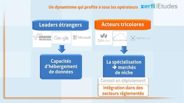 Etude Marche Francais Du Cloud Computing