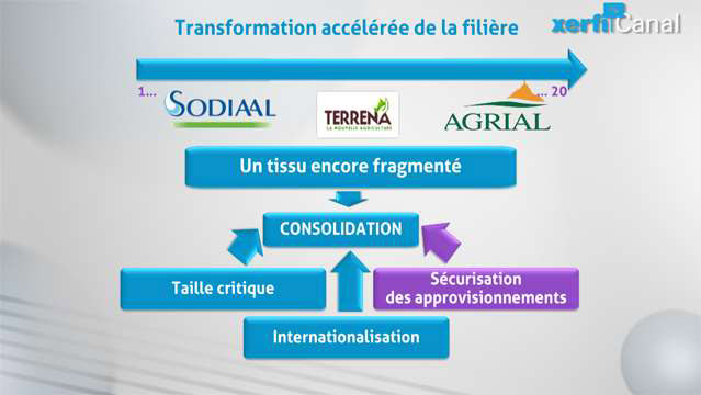 Damien-Festor-Les-cooperatives-agricoles