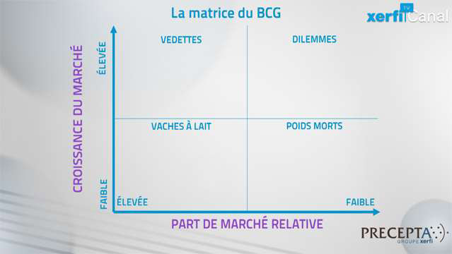 La-matrice-du-BCG-3524