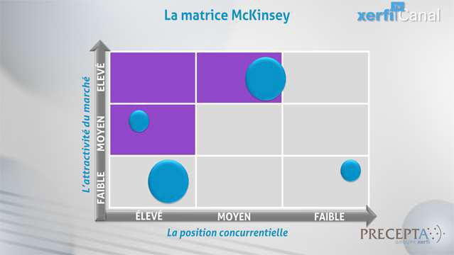 Philippe-Gattet-Comprendre-la-matrice-McKinsey