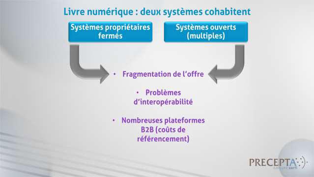 Philippe-Gattet-PGA-Pourquoi-le-livre-numerique-se-developpe-si-lentement-en-France