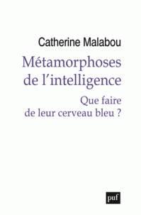 Métamorphoses de l'intelligence / que faire de leur cerveau bleu ?